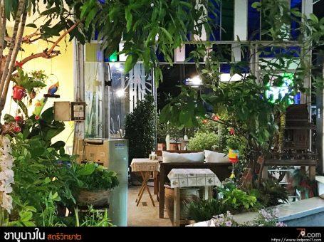 ชาบูชาบูนางใน สาขาแรก ต้นฉบับร้านชาบูที่โชคชัย 4